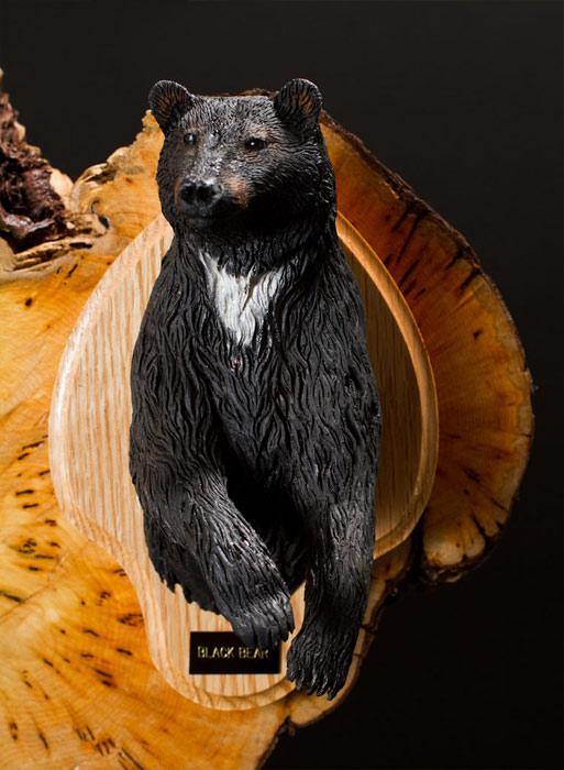 Black Bear Bust