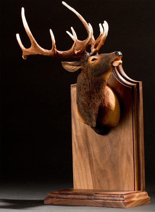 Stand-up Big Game Trophy