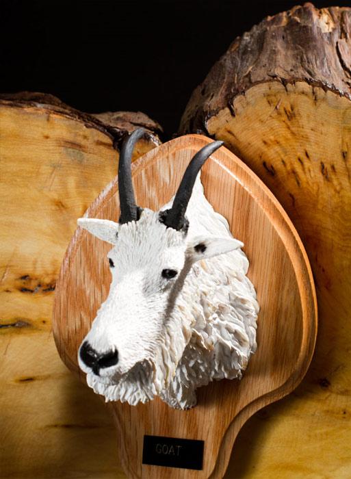 Goat Bust