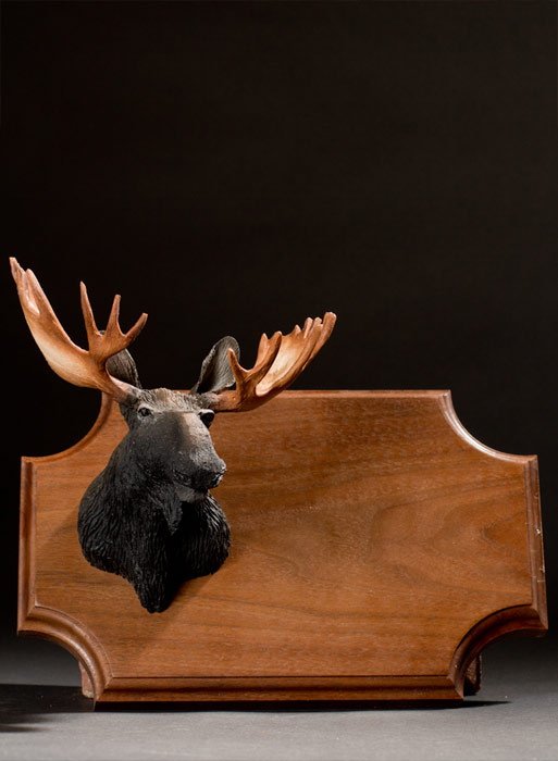 Wall Hanging Big Game Trophy